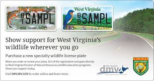 West Virginia travel agent jobs images Division of motor vehicles jpg