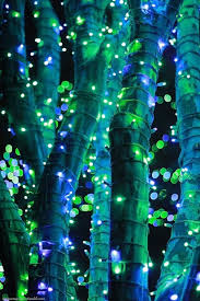 368 best neon lime green and blue images on decorated
