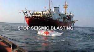 the real story on seismic blasting in our oceans youtube
