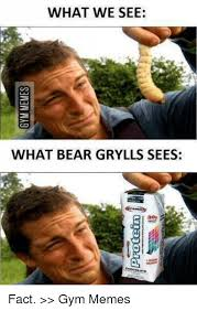 Meme Bear Grylls - what we see what bear grylls sees fact gym memes bearing meme
