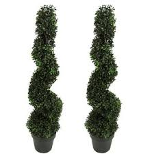 Live Topiary Tree - outdoor plants you u0027ll love wayfair