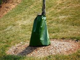 tree bag smart net systems tree bags hail bird and insect