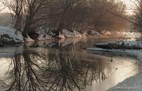 preparing for winter s end nahant marsh gallery