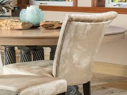 Champagne Dining Room Furniture Velvet Dining Chairs Elegant Paulina Champagne Dining Chair Set Of