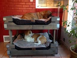 Bunk Bed For Dogs Bunk Beds Diy Simple Design Bunk Beds Modern Bunk Beds