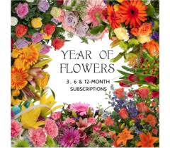 monthly flower delivery monthly designer flowers subscription delivery sebring fl