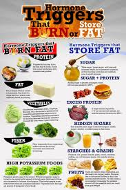 six pack diet foods 28 images south indian six pack diet