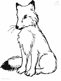 fox coloring pages fablesfromthefriends com