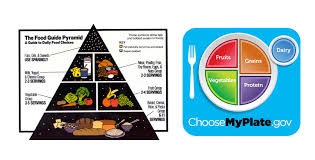replacing the food pyramid with myplate u2013 part 4 mymedicalforum