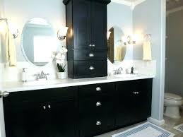 Bathroom Vanity Storage Tower Bathroom Counter Storage Tower Dynamicpeople Club