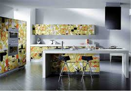 Unique Kitchen Cabinet Ideas by New Cool Kitchen Cabinet Ideas 1135x900 Eurekahouse Co