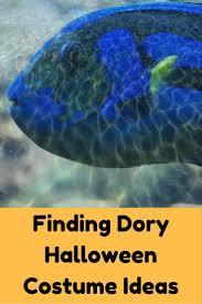 best 25 finding dory online movie ideas on pinterest finding