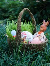 easter basket grass how to grow easter basket grass hgtv