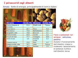 glucidi alimenti zuccheri ch2o n carboidrati ppt scaricare