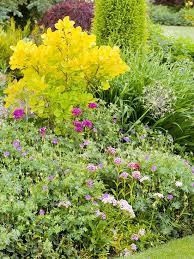 immagini di giardini fioriti flower design 11 trucchi per creare bellissimi giardini fioriti