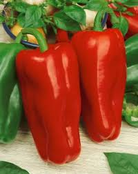 giant marconi hybrid sweet pepper seeds capsicum annuum 0 2