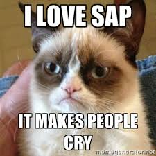 Sap Memes - devrant a fun community for developers to connect over code