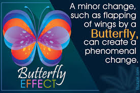 explanation of the popular butterfly effect with fluent exles