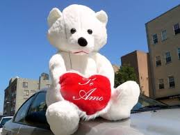 valentines big teddy find 60 teddy holding te amo heart color white