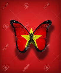 Vietnamese Freedom Flag Vietnam Flag Butterfly Isolated On Flag Background Stock Photo