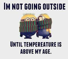 Funny Cold Meme - people who struggle during winter will understand these humor