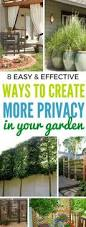 Create Privacy In Backyard Privacy With Plants Yards Plants And Gardens