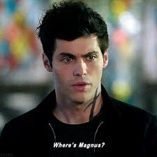 american actor with floppy hair and plays exasperated characters matthew daddario as alec lightwood on shadowhunters