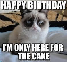 Grumpy Cat Birthday Memes - sad birthday meme google search birthday memes pinterest