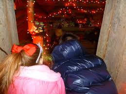 Stoneham Zoo Lights by Evan And Lauren U0027s Cool Blog 11 26 11 Zoolights At The Stone Zoo