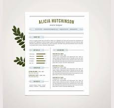 It Professional Resume Sample by It Professional Resume Template It Professional Resumes Resume