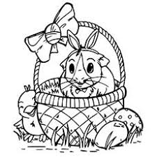guinea pig coloring pages at children books online