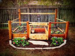 raised bed organic vegetable garden seedlings gardening