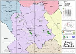 Map Of Rwanda Dfs Deutsche Forst Service Gmbh Rwanda Forest Assessment And