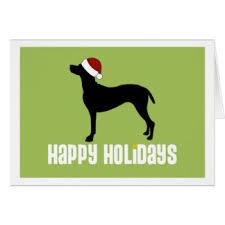 vizsla christmas cards u0026 invitations zazzle co uk