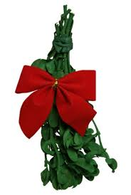 where to buy mistletoe mistletoe greenery buy mistletoe greenery products online in uae