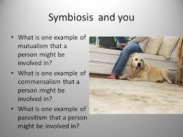 relationships between organisms connections between organisms all