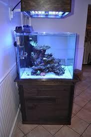 Okeanos Aquascaping 12gallon Mr Aqua Tank Rimless Aquascaping Aquarium Pinterest