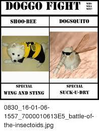 U Win Meme - doggo fight who will win dogsquito shoo bee special special suck u