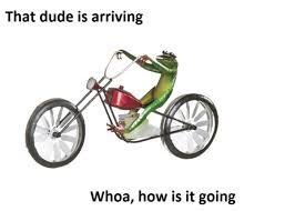Unicycle Meme - dat boi know your meme