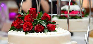 weddings wedding photographers honeymoons hilton head island sc