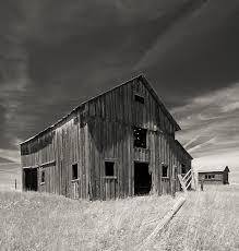 Black Barns Old Barn Sepia Image Montana