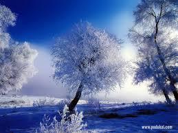 beautiful snow scenery wallpaper free download funawake com