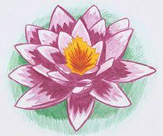 Simple Lotus Flower Drawing - lotus flowers and lily pads how to draw a lotus water lily