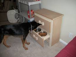 Bench Dog Cookies Every Dog Owner Should Learn These 20 Diy Pet Projects