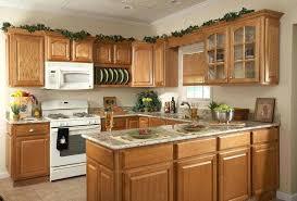 kitchen cabinet door design ideas kitchen cabinet door knobs snaphaven