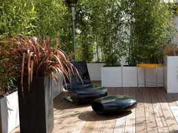Backyard Landscaping Ideas For Privacy by How To Customize Your Outdoor Areas With Privacy Screens