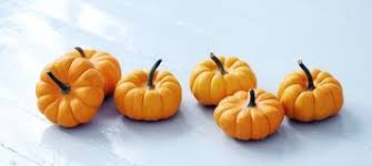 small pumpkins lots of small pumpkins stock photo image of pumpkin 45816604