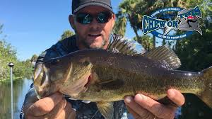 Sho Intens best bass fishing florida fishing tourney in florida time