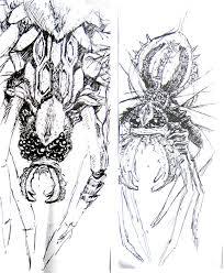 fantasy spider sketch by artisticallyihungry on deviantart