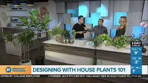 How To Design Your Home Interior How To Design Your Home With House Plants Youtube